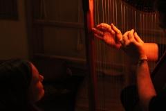 Teelised harfihuvilised